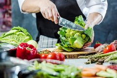 Chef prepares vegetables to cook in the restaurant kitchen. Chef cook preparing vegetables in his kitchen standing on the grey background holding a knife royalty free stock image