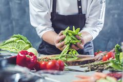 Chef prepares vegetables to cook in the restaurant kitchen. Chef cook preparing vegetables in his kitchen standing on the grey background holding a knife royalty free stock photography