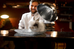 Chef cook serving alive rabbit Royalty Free Stock Image