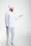 Chef cook showing copyspace on the palm Stock Photography