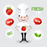 Chef - Cook Vector Illustration Royalty Free Stock Photography