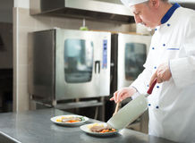 Chef cooking in his kitchen Royalty Free Stock Photos