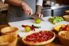 Chef Cooking Spicy Food stock images