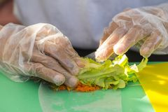 Chef cooking steps to make fresh spring rolls with salad vegetable and Shrimp Eggs on hand cook, in outdoor restaurant kitchen.