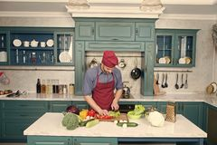 Chef cooking vegetarian recipe. Vegetarian cuisine rich vitamins. Man chef wear apron cooking in kitchen. Man cook. Vegetarian recipe with fresh vegetables stock image