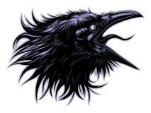 Chef criard de corbeau illustration de vecteur