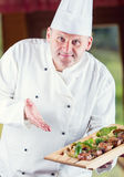 chef Cuoco unico Cooking Cuoco unico che decora piatto Cuoco unico che prepara un pasto Il cuoco unico nella cucina del ristorant Fotografie Stock
