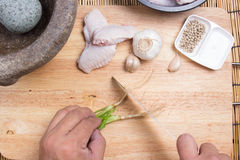 Chef cutting coriander with knife Royalty Free Stock Photo