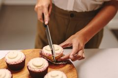 Chef cutting a cupcake royalty free stock photos