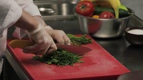 Chef cutting fresh greenery, close up stock video