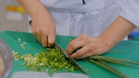Chef cutting green onion. Chef hands chopping, cutting green onion, scalliion with knife at cuisine of restaurant. Professional cooking, catering, cookery stock footage