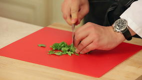 Chef Cutting Spinach Salad Closeup stock video