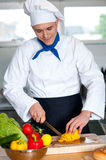Chef cutting vegetables in kitchen Stock Images