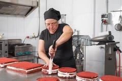 Chef de reposter?a de la mujer que sonr?e y que trabaja feliz, haciendo las tortas en la tienda de pasteles fotografía de archivo