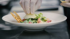 Chef decorate salad with shrimp stock footage