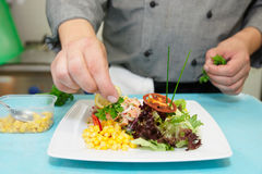 Chef is decorating appetizer Stock Image