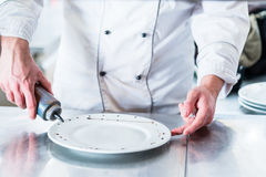 Chef decorating dish before garnishing the food Royalty Free Stock Photos