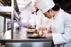 Chef decorating a food plate Royalty Free Stock Photography