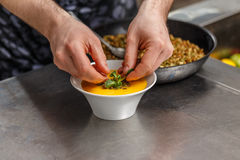 Chef decorating soup Royalty Free Stock Photo