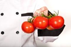Chef, der frische Tomaten anhält Stockfoto