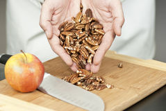 Chef Displays Pecans. Close-up of a chef displaying pecans Royalty Free Stock Image