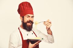 Chef eats italian or asian noodles. Cook with happy face. In burgundy uniform holds fork and plate. Man with beard holds tasty dish on white background. Fast royalty free stock image