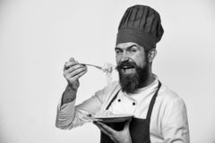 Chef eats italian or asian noodles. Cook with happy face. In burgundy uniform holds fork and plate. Man with beard holds tasty dish on white background. Fast stock images