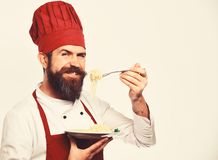 Chef eats italian or asian noodles. Man with beard. Holds tasty dish on white background, copy space. Cook with cheerful face in burgundy uniform holds fork and stock image