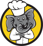 Chef Elephant Arms Crossed Circle Cartoon Stock Image