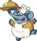 Chef Elephant Stock Photography