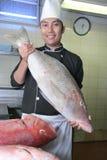 Chef et poissons Image stock