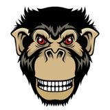 Chef fâché de singe illustration libre de droits