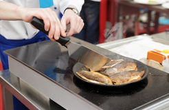 Chef frying seabass fillet Royalty Free Stock Images