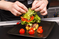 Chef garnish tasty dish Royalty Free Stock Photo