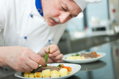 Chef garnishing a dish Royalty Free Stock Photo
