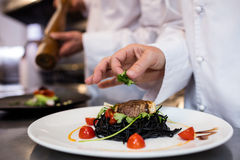 Chef garnishing meal on counter. In commercial kitchen Royalty Free Stock Photography