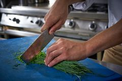 Chef hands cutting chives in restaurant kitchen Royalty Free Stock Photos