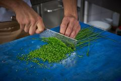 Chef hands cutting chives in restaurant kitchen Stock Image