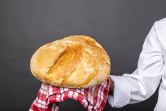 Chef holding a big rustic bread Royalty Free Stock Photo