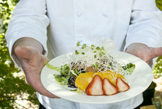 Chef holding dish Stock Photography
