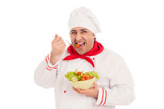 Chef  holding dish with salad and fresh vegetables Royalty Free Stock Photos