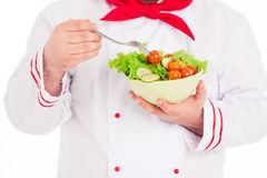 Chef  holding dish with salad and fresh vegetables Royalty Free Stock Photo
