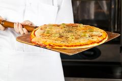 Chef Holding Pizza On Shovel. Midsection of female chef holding pizza on shovel Royalty Free Stock Image