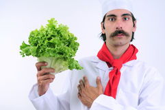 Chef Holding Vegetable. Serious looks Chef holding lettuce vegetable Stock Photo