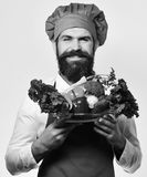 Chef holds bowl with fresh vegetables. Cook with smile in burgundy uniform holds salad ingredients. Man with beard on white background. Healthy nutrition and stock photos