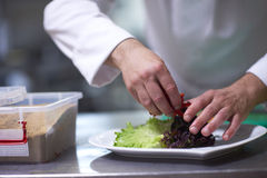 Chef in hotel kitchen preparing and decorating food Royalty Free Stock Photo