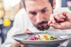 Chef in hotel or restaurant kitchen preparing food. stock photo