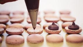 Chef with injector squeezing filling to macarons stock footage