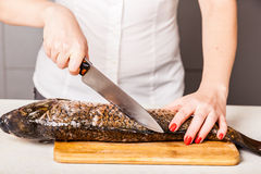Chef kitchen knife cut the fish Royalty Free Stock Image