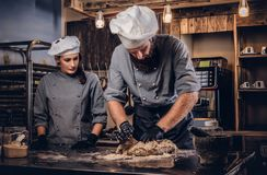 Chef kneading dough in the kitchen. Chef teaching his assistant to bake the bread in the bakery. Chef kneading dough in the kitchen. Chef teaching his assistant stock photos